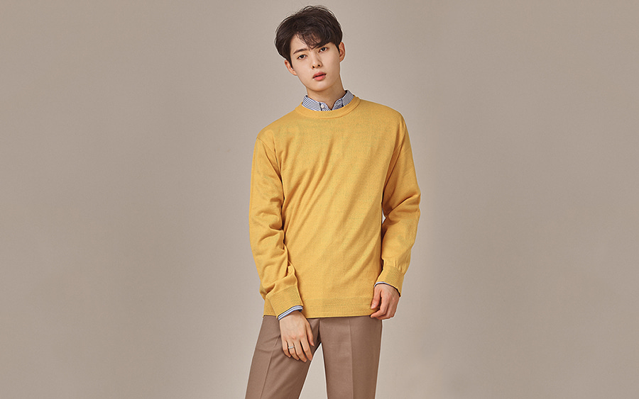 Single Tone Crew Neck Sweater